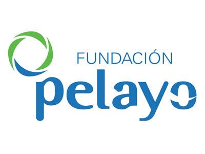 Fundación Pelayo - Patrocinador de la Fundación También